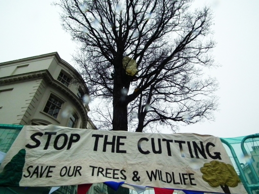 Stop the cutting